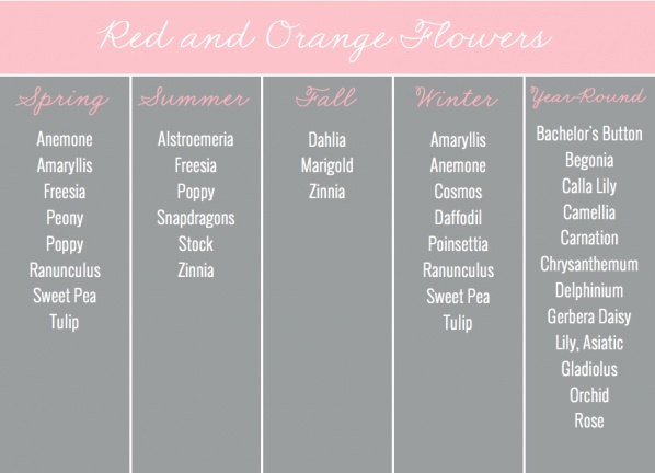 Red & Orange Flowers by Season