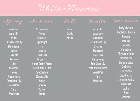 White Flowers by Season