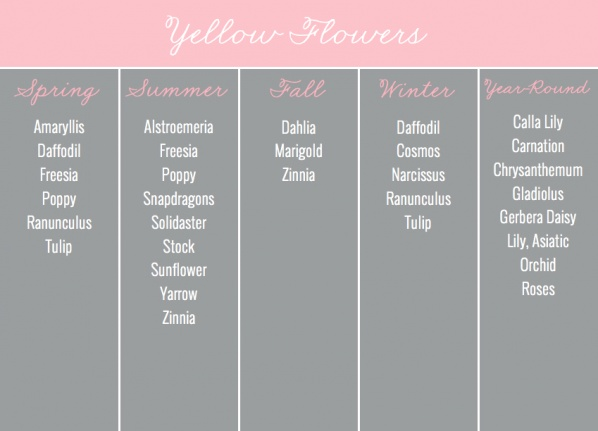 Yellow Flowers by Season